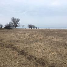 Земельные участки: Земельный участок под строительство в КРыму
