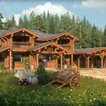 Проект дома: Медвежье озеро